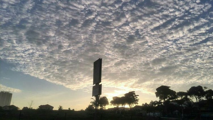 朝阳,向东升,大地新。