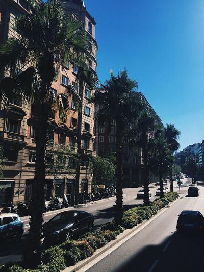 Barcelona Barcelona, Spain Barcelonalove