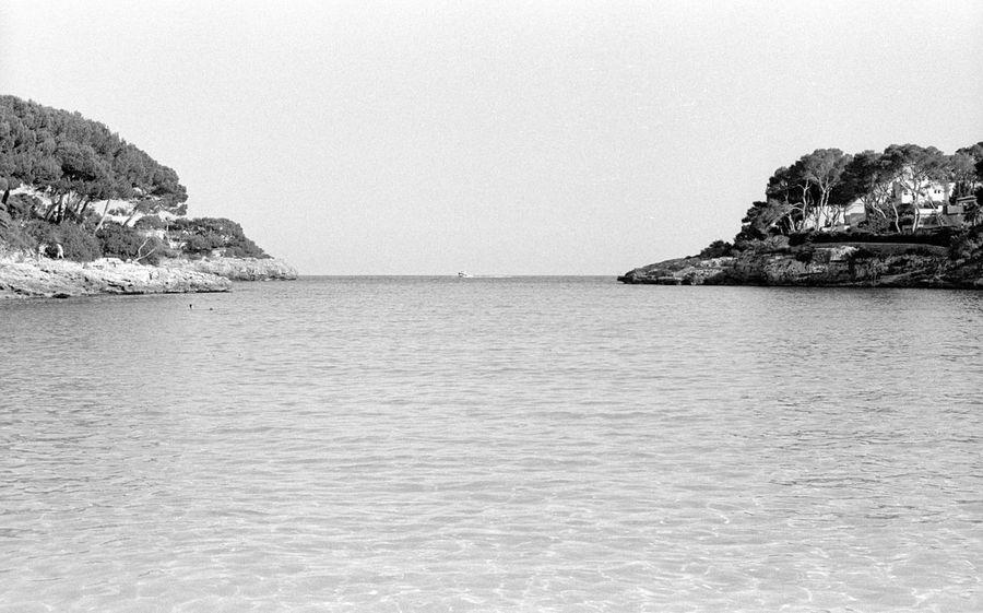 Baleares Balearic Islands Cala Domingos Es Trenc Mallorca Seagull Seascape Ses Salines