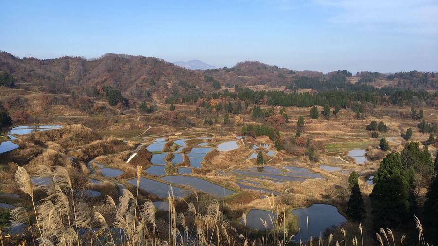 新潟県 Niigata 十日町 Touka-machi の 星峠 Hoshitouge の 棚田 Tanada 。まだギリギリ水が残っていた。陽の光が反射して、鏡みたいに綺麗に見える。 Beautiful rice terraces. Nature Tranquility Tranquil Scene Non-urban Scene Beauty In Nature Scenics Water Reflection Landscape Rice Field Rice Terraces EyeEm Best Shots EyeEmBestPics From My Point Of View Rural Scene Agriculture Silver Grass