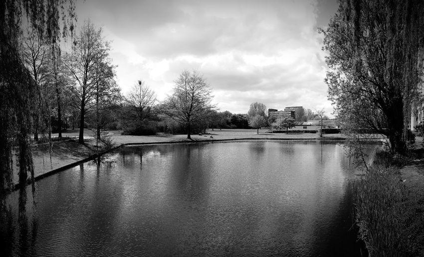 The silence @ park wielwijk-dordrecht, the Netherlands