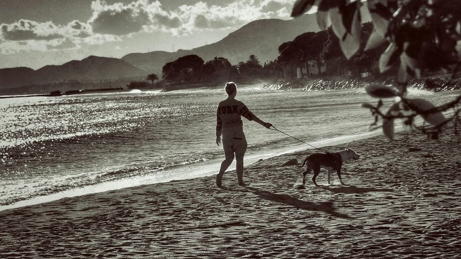 Woman walking her dog on the beach