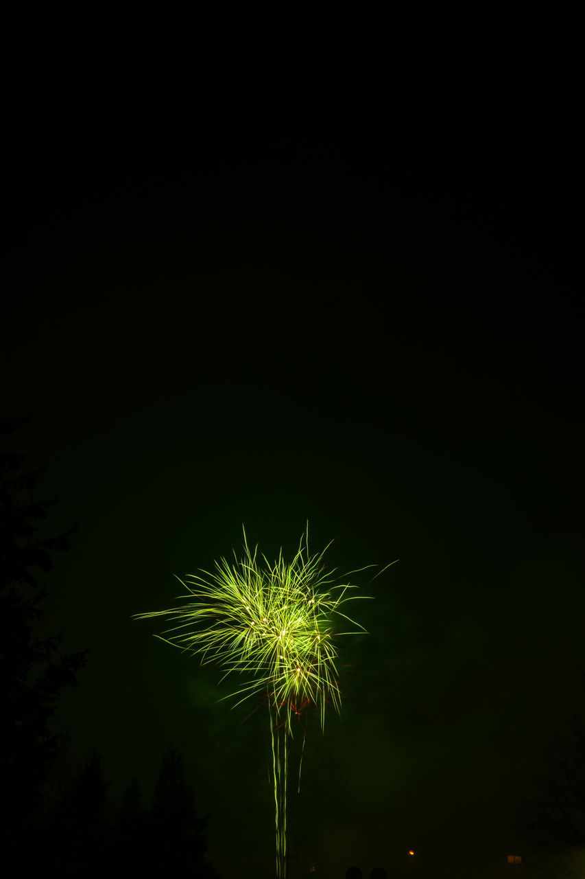 FIREWORK DISPLAY AGAINST SKY DURING NIGHT