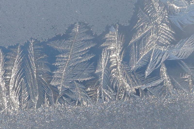 Snowflake Snow