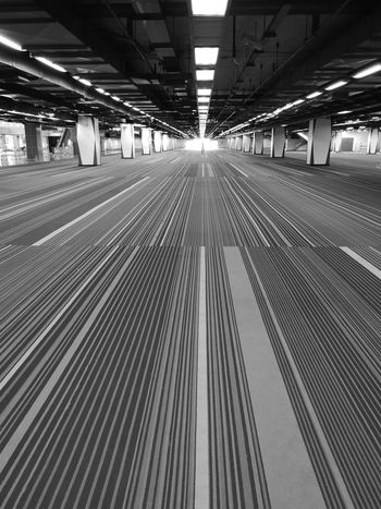 drawing lines Architecture Interior Design Carpet Lines Perspective Photography Perspective Leading Lines Light Light At The End Of The Tunnel Hallway Exhibition Center Cityscape Futuristic Interior Design Pillars Lamps Striaght Shadow Black And White Blackandwhite Huawei P20 Pro Monochrome Pattern Floor Space