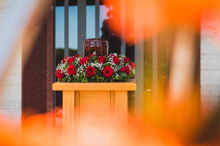 Red flower pot against window