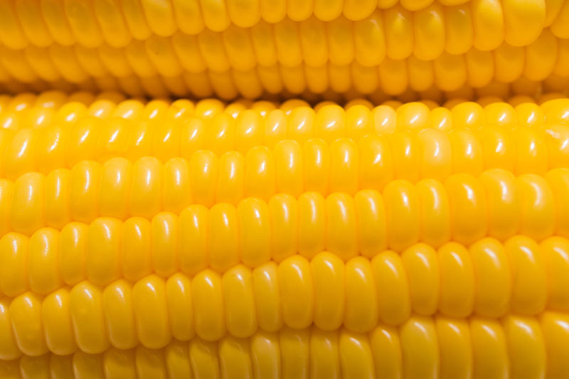 Close-up Corn Food Freshness Healthy Eating Macro No People Sweet