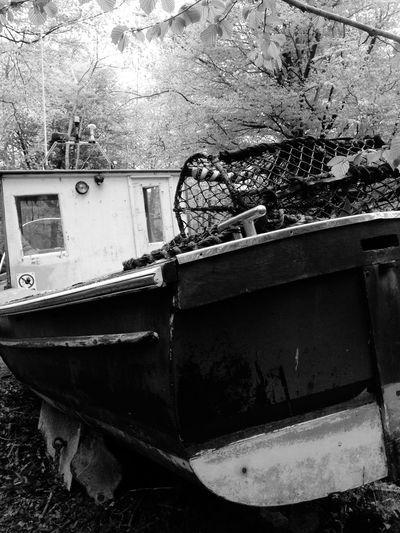 Woods Taking Photos Walking Around Boats Bristol England Art