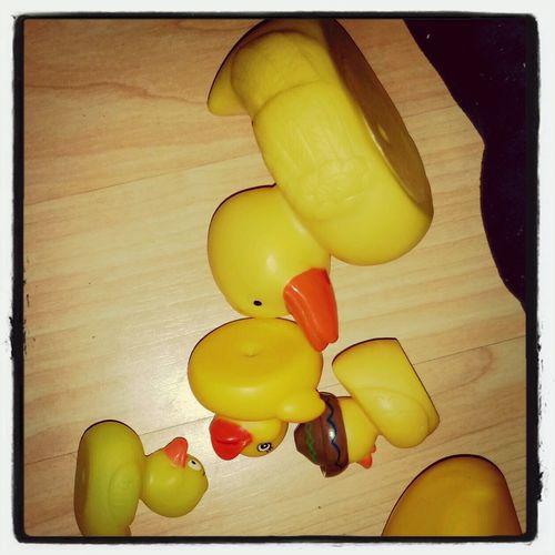 Rubber duckys Rubber Duck
