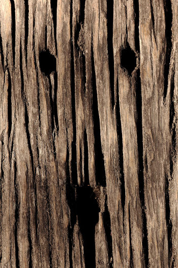 Face of wood Fotografi Eyeemphotography Close-up Texture Image Photography Eyemphotography Stockphoto Photo Wooden Floor Old Classic Abstract