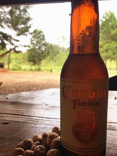 Sunday Conroe Texas Chill Sunday Beer Corona First Eyeem Photo
