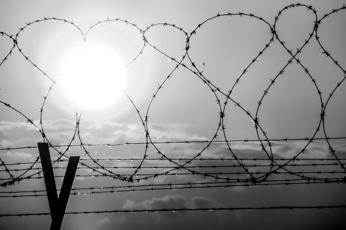 #EyeEmEsterlinda #italy #sundown Barbed Wire Black & White Black And White Blackandwhite Chainlink Fence Fence Nature Protection Safety Security Sky Sun Wire Mesh EyeEmNewHere