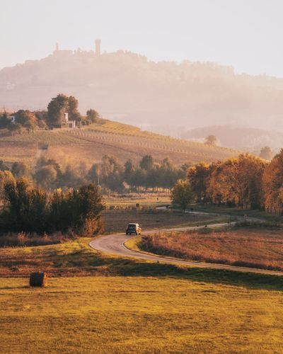 Nature Outdoors No People Langhe Langhe Italy Italy Piedmont Italy Light And Shadow Colors Colors Of Autumn Nature_collection Nature Photography Outdoor Photography EyeEm Best Shots EyeEmNewHere EyeEm Nature Lover EyeEm Selects VSCO Vscocam Nikon Nikonphotography Nikonphotographer Hills Hills And Valleys Bestoftheday Tree Plant Landscape Land Field Environment Scenics - Nature Tranquility Tranquil Scene Beauty In Nature Transportation Day Growth Sky Mode Of Transportation Non-urban Scene Idyllic Change