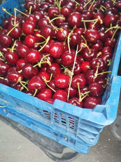 Close-up of cherries in basket