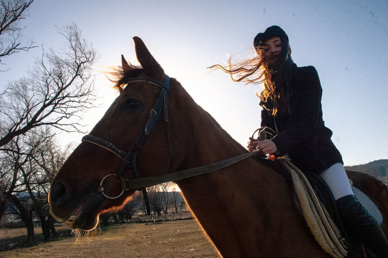 Low angle portrait of woman riding horse against clear sky