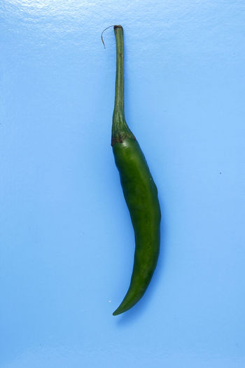 green chili pepper Food Ingredient Food And Drink Taste Flavor Spice Spices Spicy Spicy Food Green Color Green Chili Pepper Chili  Chili Pepper Ingredient Flavor Colored Background Studio Shot Vegetable Close-up Pepper Raw Raw Food