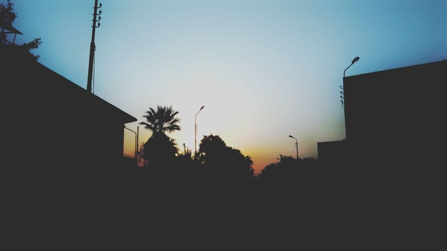 Silhouette Sunset Sky Outdoors Animal Themes Bird Building Exterior Nature Day No People Architecture Tree Mammal Scenics This Is Egypt ❤ Clear Sky Freshness Urban Skyline Cityscape Skyscraper Travel Destinations City Life Built Structure Architecture Sunrise_sunsets_aroundworld