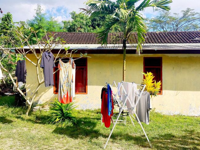 Laundry and nature (Bali - July 2017) EyeEmNewHere Built Structure House Tree No People Day Chair Outdoors Clothesline Hanging Shelter Drying Grass Sky Yellow INDONESIA Bali Laundry
