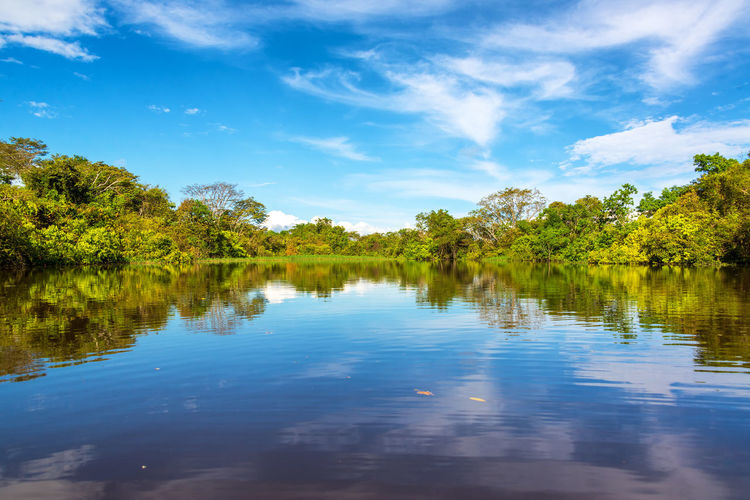 Sky being reflected in the Javari River in the Amazon rain forest Amazon Amazonas Amazonia Beauty In Nature Blue Blue Sky Brazil Forest Javari River Jungle Landscape Nature Nature No People Rain Forest Rainforest Reflection Scenics Sky South America Tourism Travel Travel Destinations Tree Water