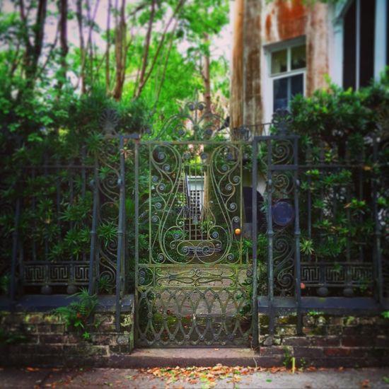 Charleston Gate Charleston Vikki Bradley O'Keefe Art