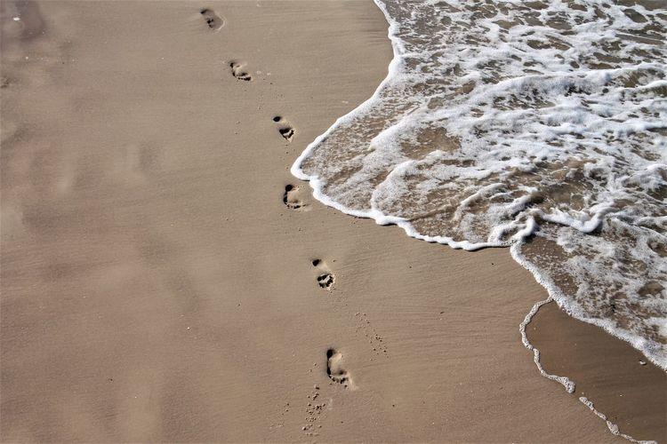 Footprints at a beach at the baltic sea
