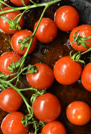 High angle view of tomatoes in water