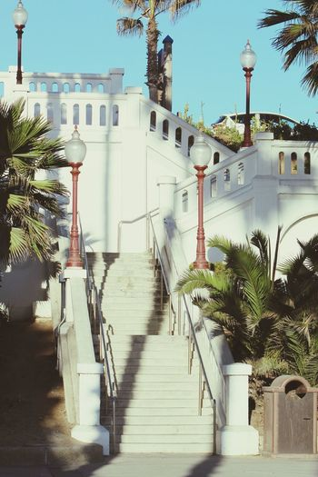 Architecture Built Structure Outdoors Day Palm Tree Sky No People Oceanside, Ca Afternoon Oceanside Oceanside Pier Sunlight Staircase, Stairs, Steps, Stairway, Flight Of Stairs, Stoop
