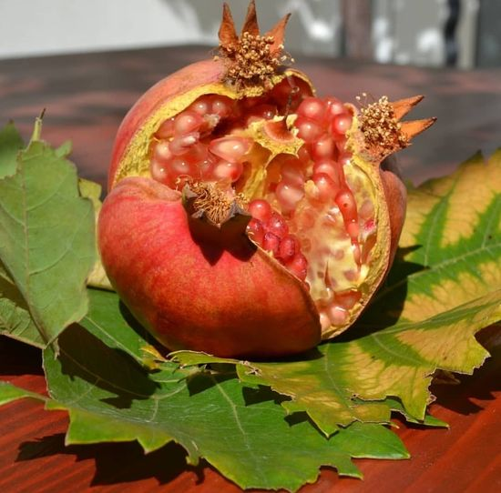 Fruit Red Leaf