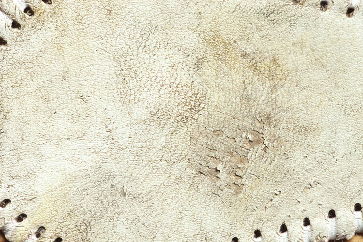 Grungy leather texture of a used baseball Baseball Cowhide Holes Leather Backgrounds Close-up Color Image Damaged Dirt Flat Grunge Horsehide Marks No People Photography Rough Scuffed Sport Textured  Used White Worn