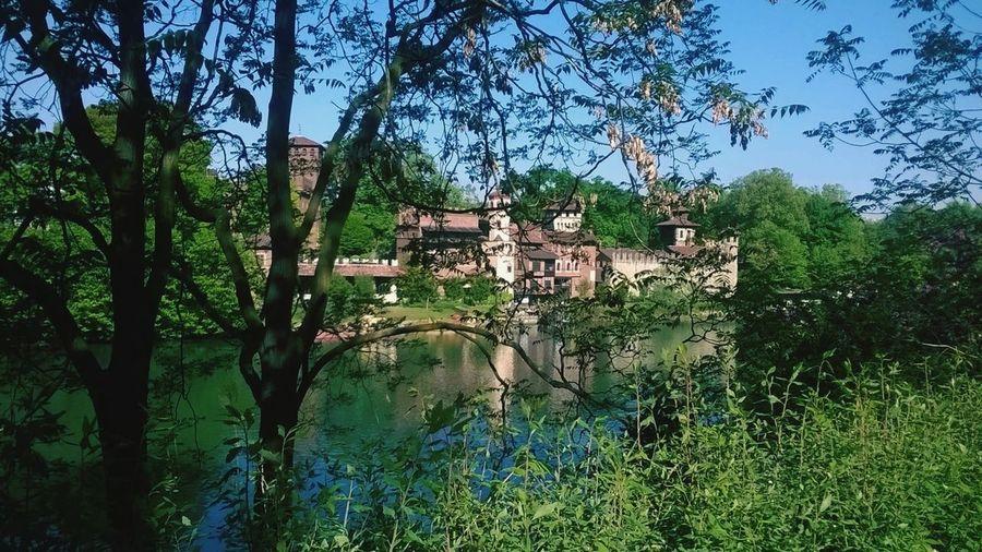 Torino Torinoélamiacittá Castellodelvalentino Italia FiumePo Verde Natura Passione