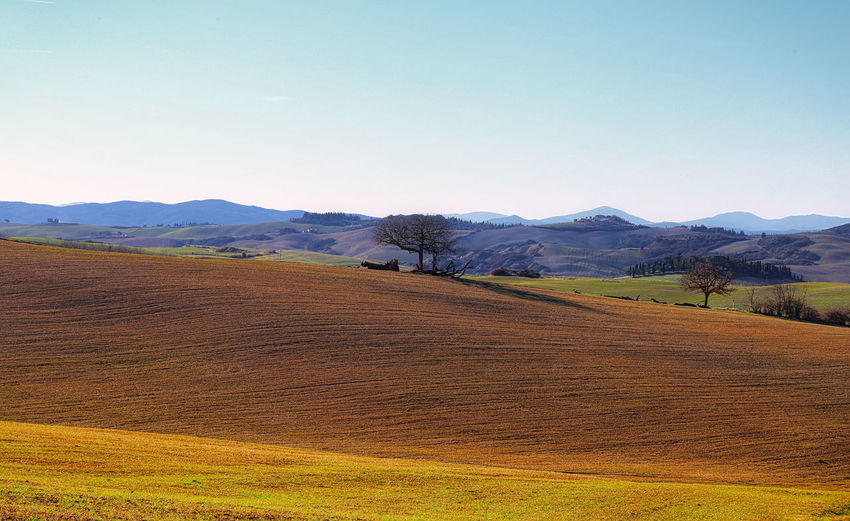 Val D 'Orcia Landscape Scenics - Nature Sky Mountain Field Land Trees Grass Idyllic Day Copy Space Outdoors Nature Tranquil Scene Mountain Range Open Field 2 Trees Red Earth Beauty In Nature Clear Sky Non-urban Scene 17.62° Land Rural Scene Field No People