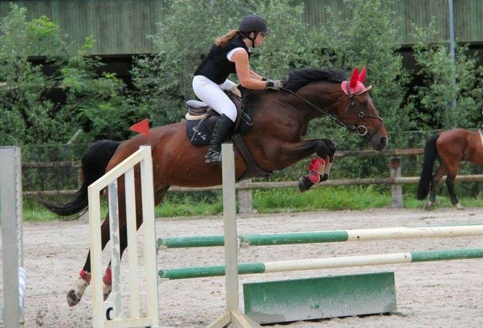 Mon poney volant