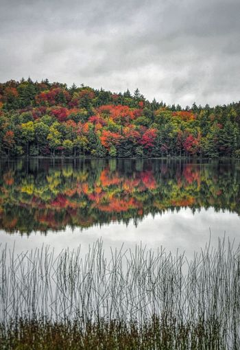 Reflection Nature Water Landscape Autumn Multi Colored Beauty In Nature Outdoors Nature On Your Doorstep Nature At Work Beauty In Nature Share Your Adventure Finding New Frontiers My View Right Now Mybestphoto2017 Autumn Wilderness Reflection Upstate New York Adirondack Mountains