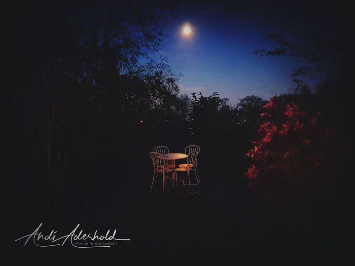 Tree Moon Arts