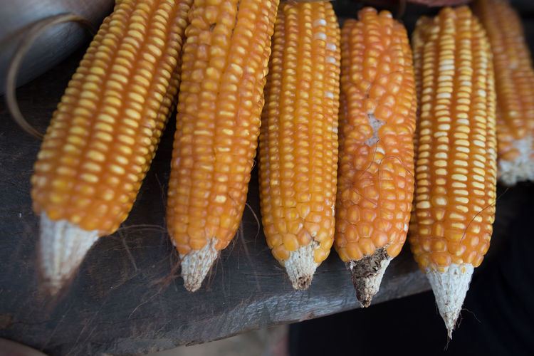 Maiz Corn Chicha Vegetable Corn Grain Grain