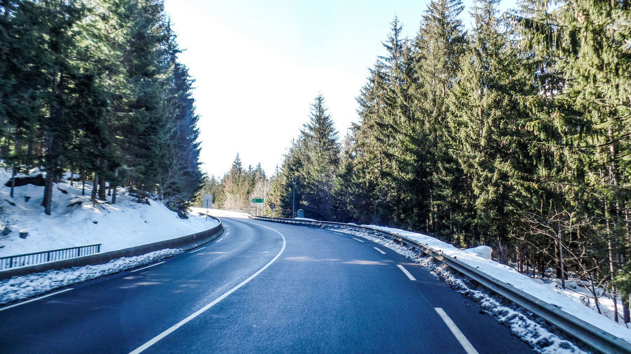 Road Tree Transportation Plant The Way Forward Snow Sign Direction Cold Temperature Winter Symbol Road Marking Nature No People Sky Marking Day Empty Road Diminishing Perspective Outdoors Crash Barrier Dividing Line