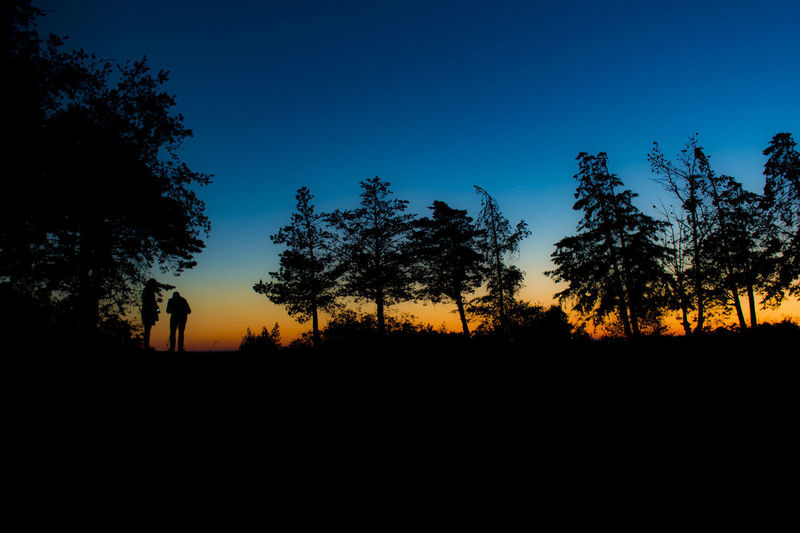 Sunset_collection Beauty In Nature Landscape Landscape_photography Nature Outdoors Sky Sunset Be. Ready. Landscape_Collection Landscapes Landscape Photography Nightscape Tree Art Treescape Tree And Sky Trees And Sky Night Photography Tree_collection  Trees Trees And Nature