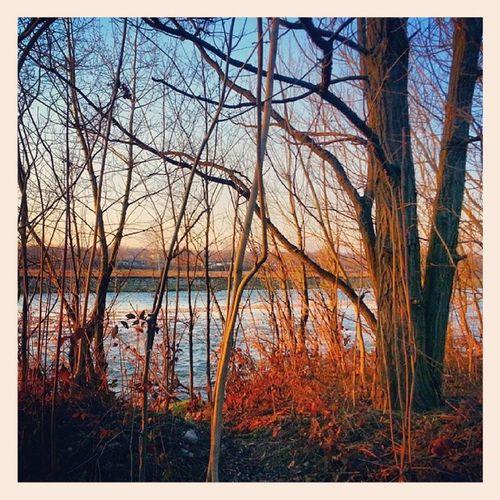Fiume Intrecci Acqua River Water Blue Red
