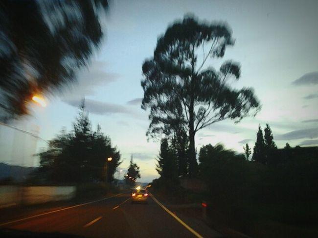 Traveling Roadway Vanishing Point nature