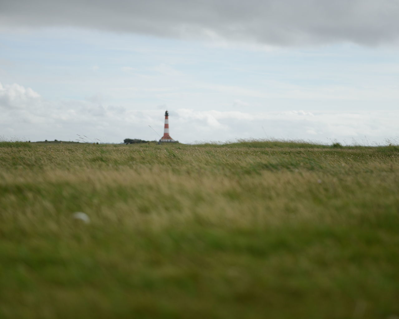 grass, field, cloud - sky, sky, nature, built structure, architecture, no people, lighthouse, day, building exterior, outdoors, beauty in nature, landscape, windmill