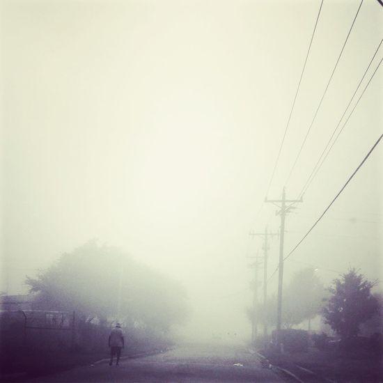 Melancholic Landscapes Foggy Morning Calm Zombies