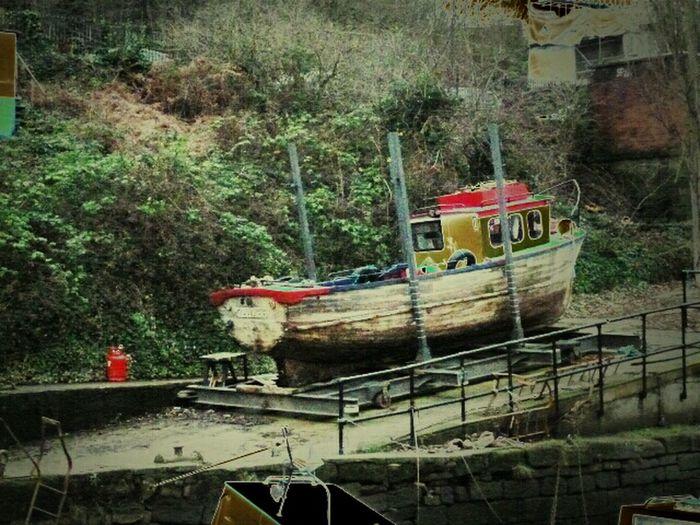 Boat Fishing History