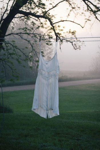 Dress White Dress Vscogood Nikonphotography Hanging Nature No People Landscape Beauty In Nature Early Morning Morning Dew Morning Light Morning Sunrise Dew Drops Morning Dew Michigan Countryside Country Life Outdoors Day Field Laundry Clothesline Laundry Day