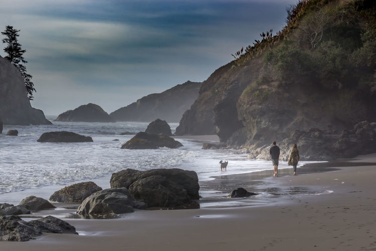 Trinidad California California Coast Pacific Ocean My Best Photo Dog Pet Walk Walk The Dog Water Rock Rock - Object Sea Solid Beach Sky Land Mountain Nature Scenics - Nature Beauty In Nature Day Rock Formation Real People People Cloud - Sky Leisure Activity Men Outdoors