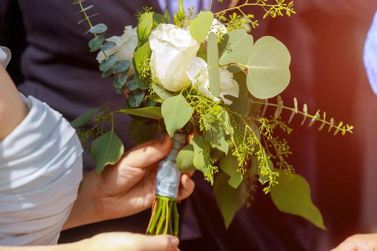 Bride holds