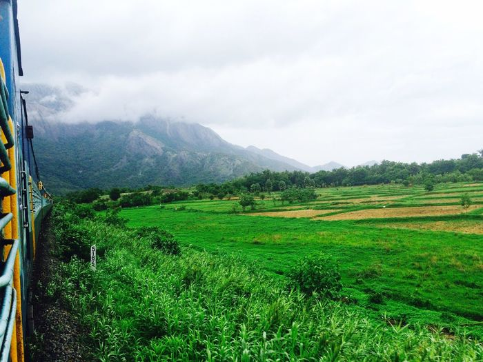 Train Palakkad Landscape IPhone Friends First Eyeem Photo