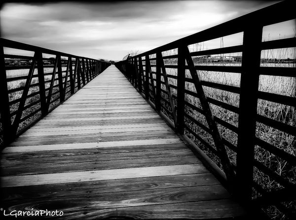 New Jersey Marsh Land..... Lgarciaphoto IPhone 7 Plus IPhone Photography Iphonephotography Shot On IPhone IPhoneography IPhone Iphoneonly Monochrome New Jersey Jersey Wild Life Marsh Land The Way Forward Diminishing Perspective Railing Boardwalk Sky Day Tranquil Scene Nature No People Footbridge Outdoors Cloud - Sky Wood Paneling