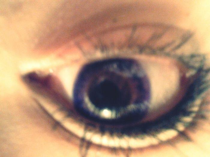 Purple Contacts Cx