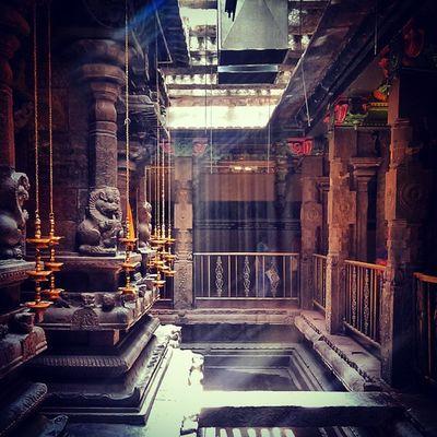 Sunlight filtering through the mesh roof at Meenakshi Temple in Madurai India Diya Lamps Heritage Religion Hindu Hinduism Ancient Belief Pillars Indiapictures Redstone Incredibleindia Lonelyplanetindia Indiatraveller Tamilnadu Sunrays