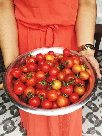 Midsection of woman holding tomatoes in bowl